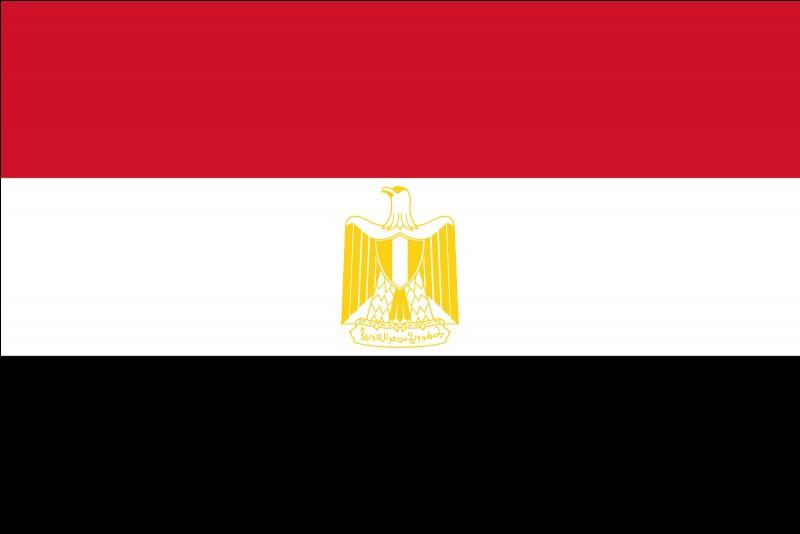 """Ce drapeau correspond à un pays commençant par le lettre """"D"""" ou la lettre """"E"""". Mais lequel ?"""