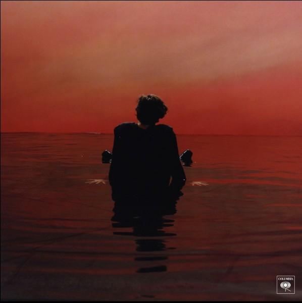 """Quel ancien membre des One Direction vient de sortir une nouvelle chanson se nommant """"Sign of the Times"""" ?"""