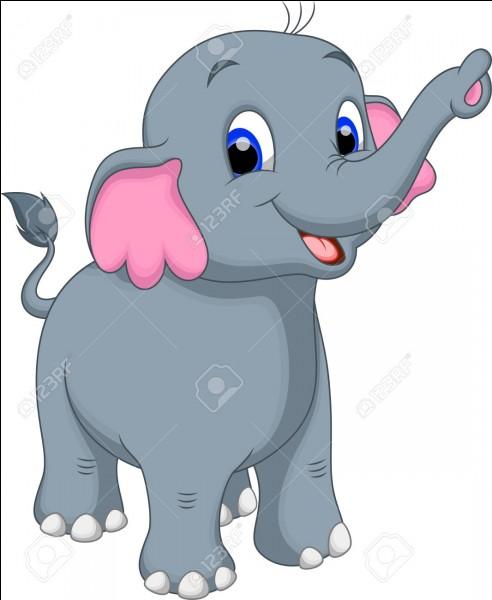 Pourquoi aucun éléphant n'est informaticien ?