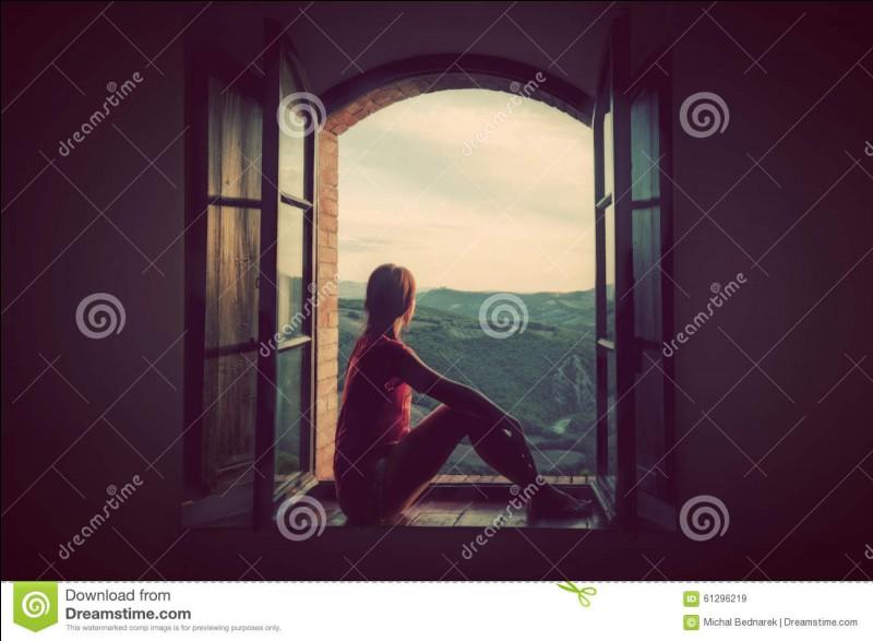 Que regardes-tu par la fenêtre ?