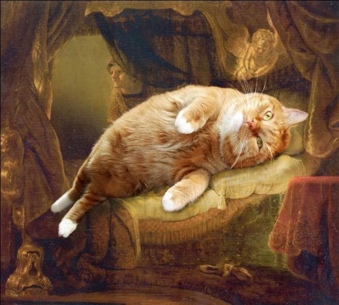 En explorant bien le tableau, ce chat ne se prendrait-il pas pour Danaé ?