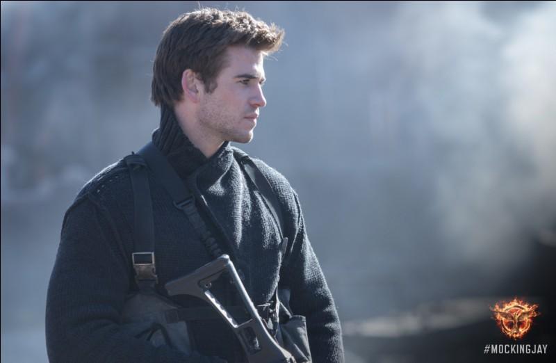 Pour Katniss qui est Gale ?
