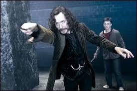 Par qui le parrain de Harry se fait-il tuer ?