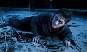 A la fin par qui Harry est-il possédé ?