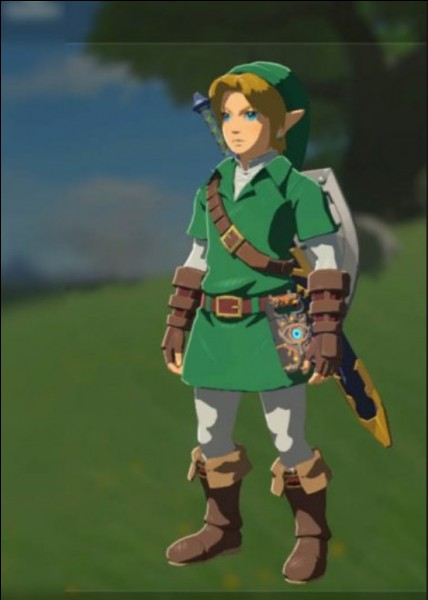 En quel Link celui présenté sur la photo est-il déguisé ?