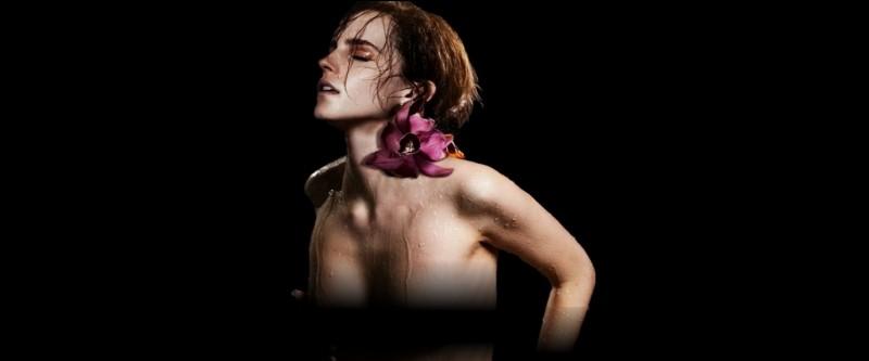/Tome 7/Hermione qui déchire les vêtements de Ron avec ardeur et lui masse le torse avec fébrilité...