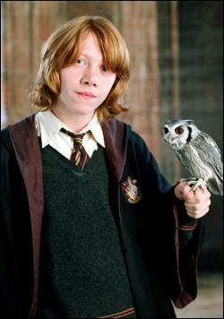 Combien Ronald Weasley a-t-il de frères et soeurs ?
