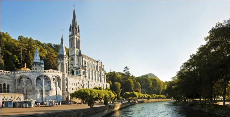 Ce p_lerin prend le train direction Lourdes.