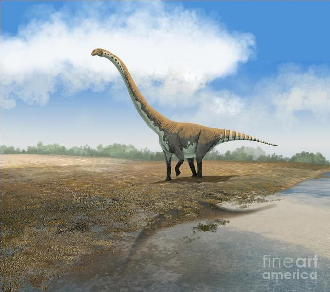 Quel est ce dinosaure euhelopodidae ?
