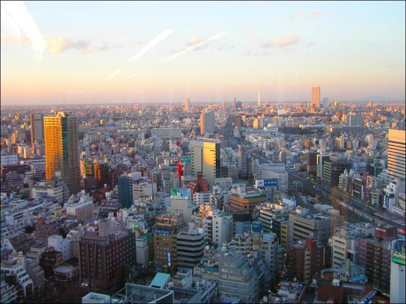 De quel pays Tokyo est-elle la capitale ?