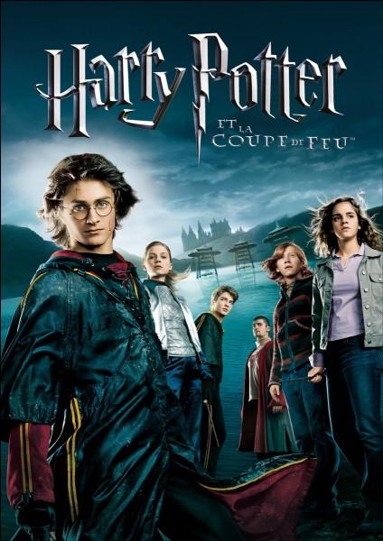 """""""Harry Potter et la coupe de feu !""""- Qui sont les 4 personnes qui doivent être sauvées par les 4 champions ?"""