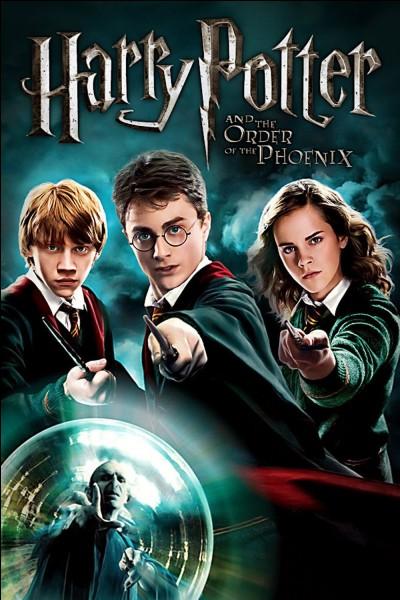 """""""Harry Potter et l'Ordre du Phénix !"""" Qui est aussi attaqué par le Détraqueur ?"""