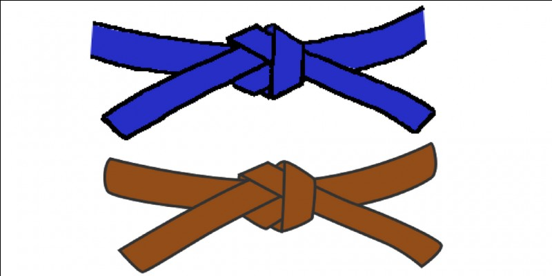 La ceinture marron vient après la bleue.