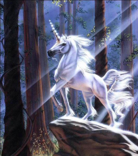 Ton surnom de licorne, c'est :