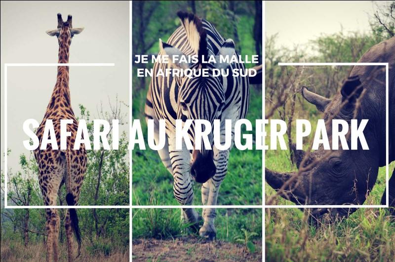 Où est situé le parc Kruger en Afrique-du-Sud ?