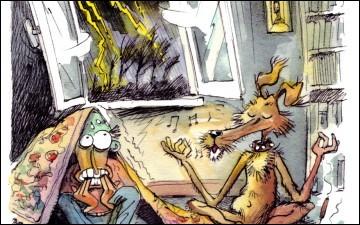 Votre chien a peur des orages simplement car ces derniers émettent des fréquences sonores qui sont très douloureuses pour les oreilles de celui-ci.