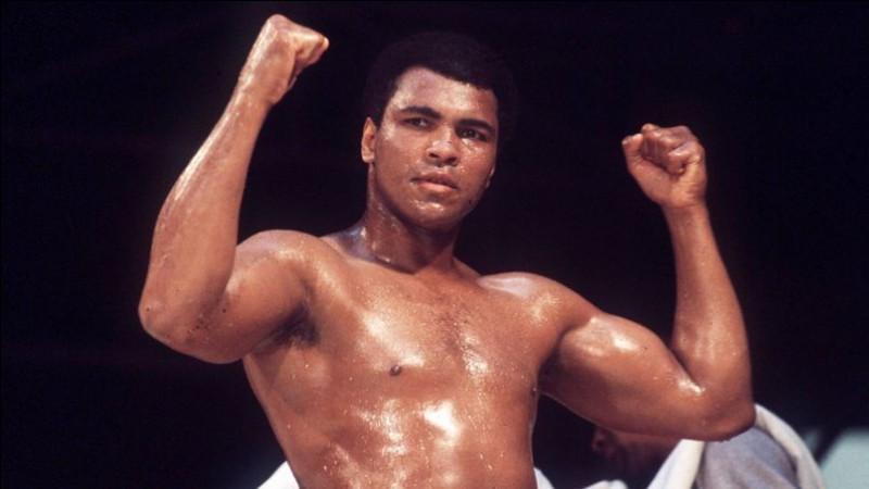 Qui est connu pour être le plus grand boxeur de tous les temps ?