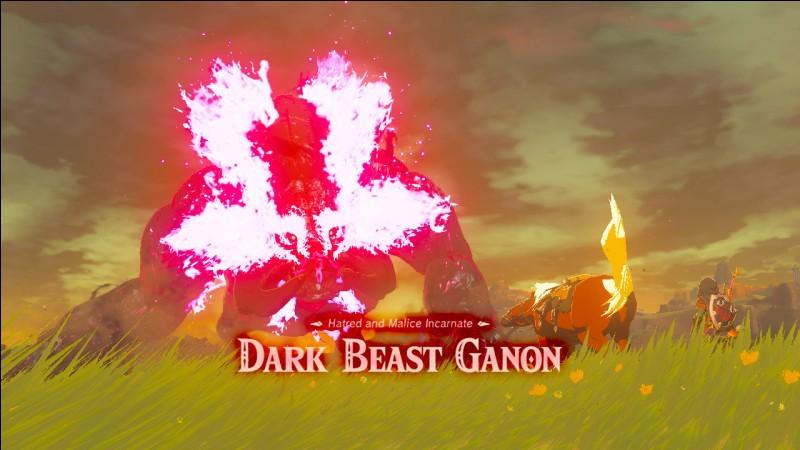 Quelle arme utilise Link dans le coup de grâce contre Ganon (à la deuxième phase) ?