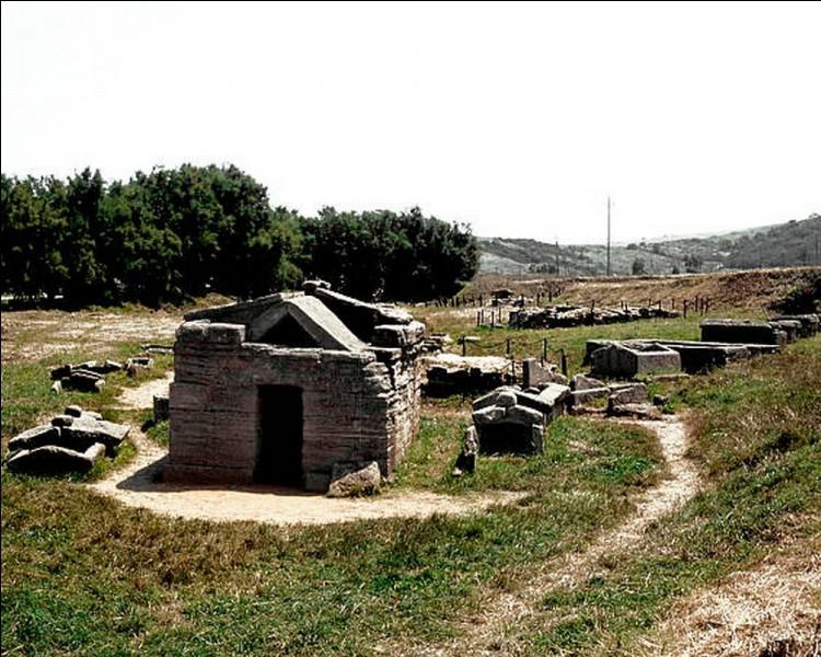 A Populonia, ces nécropoles funéraires datant du IX ème siècle avant J-C sont l'oeuvre d'une civilisation de l'âge de fer. Quel est ce peuple ayant habité la Toscane?