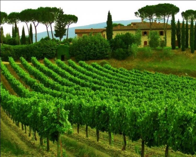 Quel vin, issu généralement de deux cépages, est produit en Toscane dans la région éponyme?