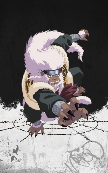 Naruto pour les pros