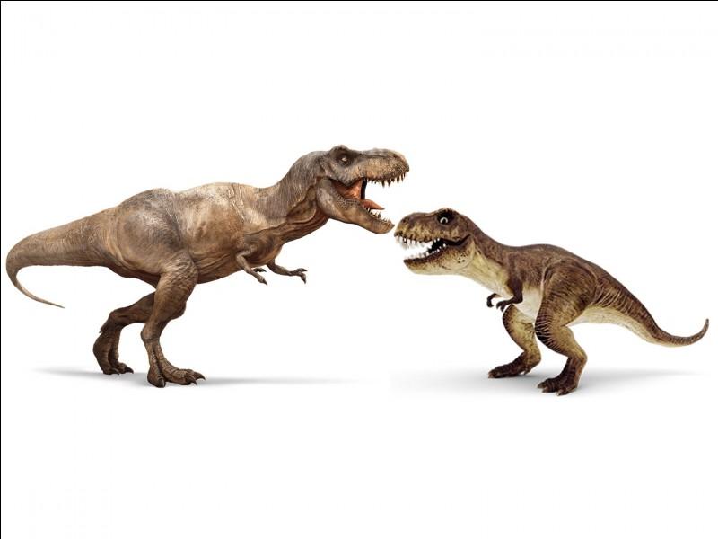 Comment s'appelle le T-Rex ?