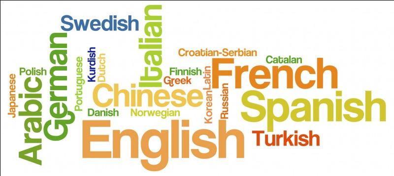 Parlez-vous plusieurs langues ?
