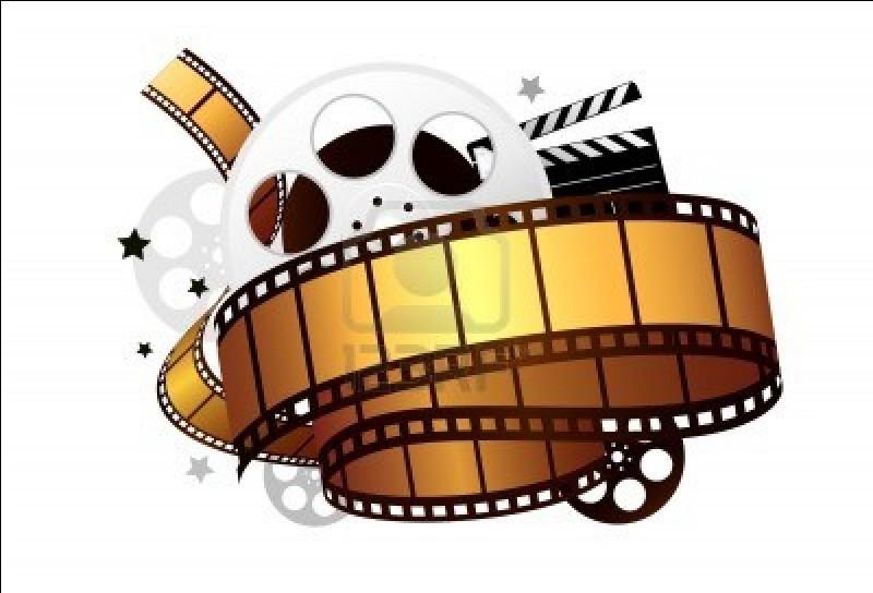 Quel genre de film aimez-vous ?