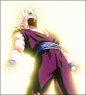 Qu'est-ce qui met finalement Son Gohan en colère, ce qui le pousse à se transformer en Super Saiyajin 2 ?