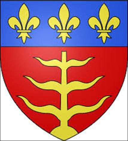Représentant de gueules au saule d'or étêté, ayant six branches sans feuilles, trois à dextre, trois à senestre ; au chef cousu d'azur chargé de trois fleurs de lis d'or, ce blason est l'emblème de la commune la plus peuplée du Tarn-et-Garonne avec 58 826 habitants. Ville qui vit naître, entre autres, le peintre Jean-Auguste-Dominique Ingres le 29 août 1780. Quelle est-elle ?