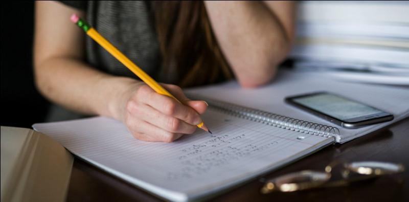 Tu as eu une très mauvaise note lors d'un devoir. Quelle est ta réaction ?