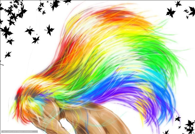 De quelle couleur son tes cheveux?