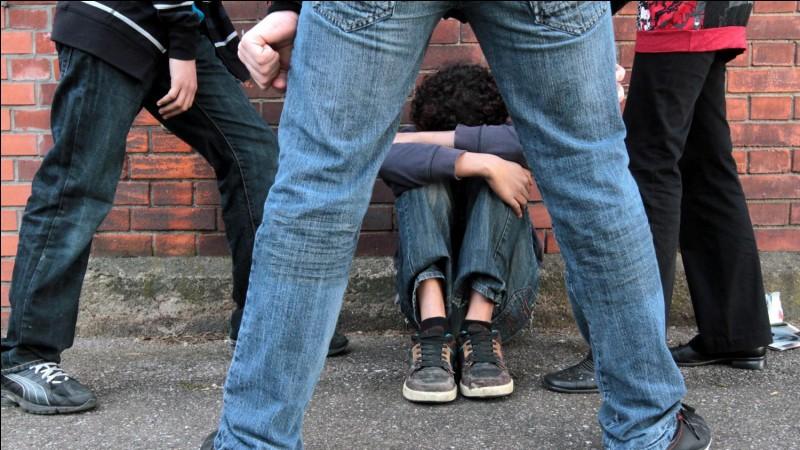 Comment réagis-tu en voyant quelqu'un se faire harceler ?