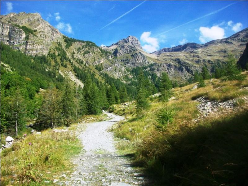 Le tourton est une spécialité culinaire des Hautes-Alpes. De quoi s'agit-il exactement ?