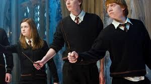 À quelle famille de 'Harry Potter' appartiens-tu ?