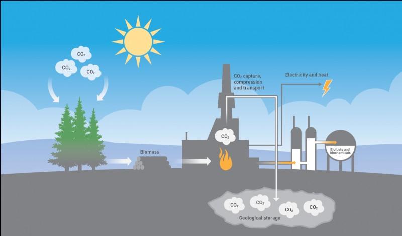 Le dioxyde de carbone.