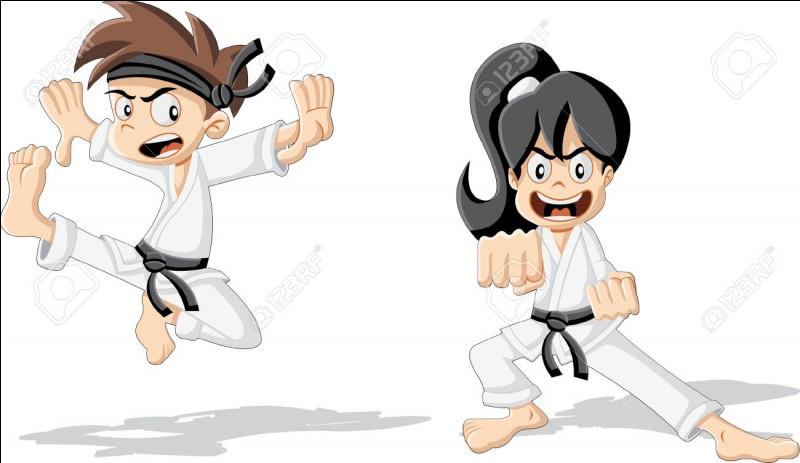 Le karaté , le taekwondo et la boxe sont des disciplines de préhension.