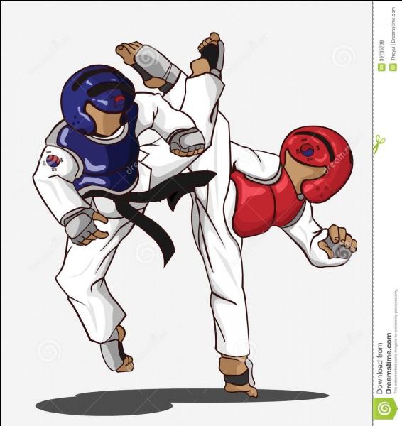 Le taekwondo est un art martial d'origine américaine .