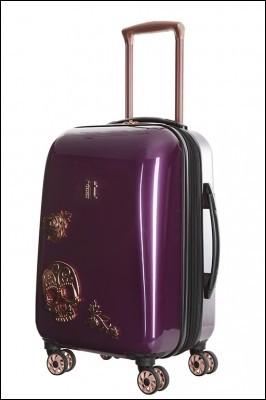 Quelle est la chose que vous vous devez absolument d'emmener dans vos bagages ?