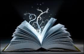 Que voudriez-vous ressentir lors de votre lecture ?
