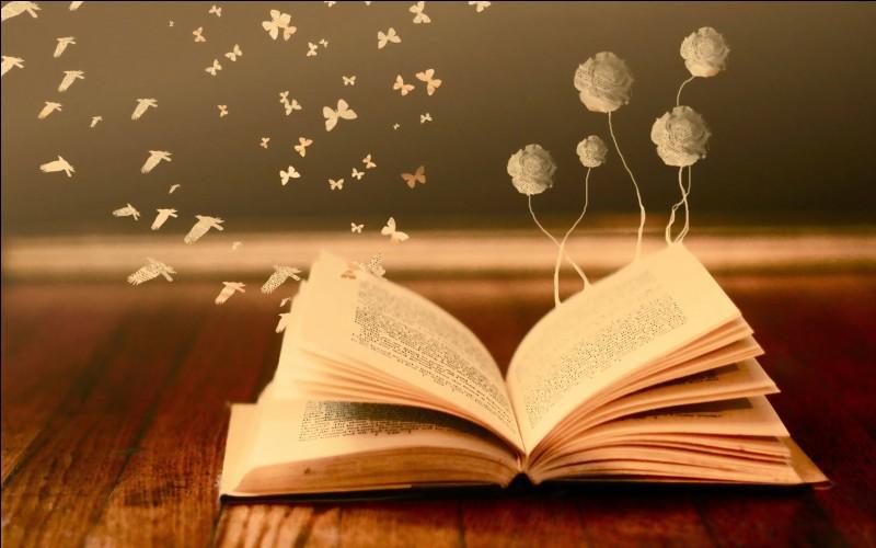 Quel genre d'histoire avez-vous envie de lire ?