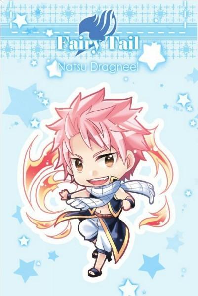 Les personnages de 'Fairy Tail'