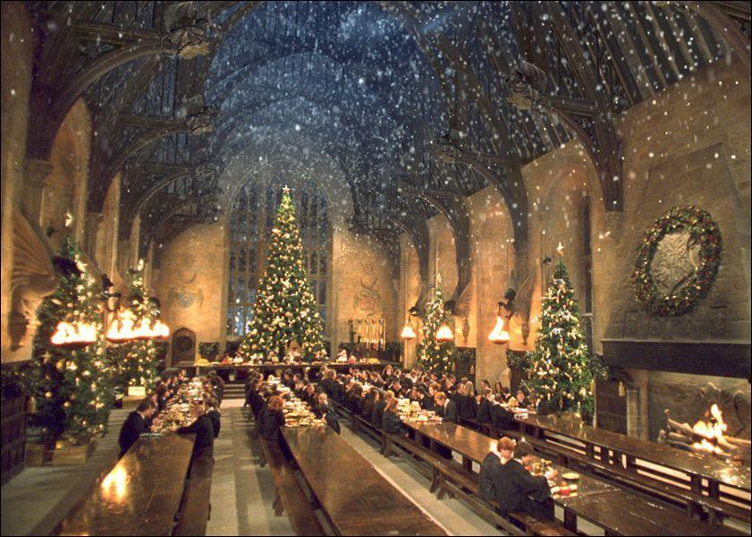 Quel professeur décore les sapins de la Grande Salle à Noël ?
