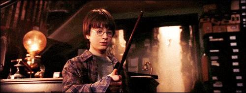 Description de la baguette de Harry :