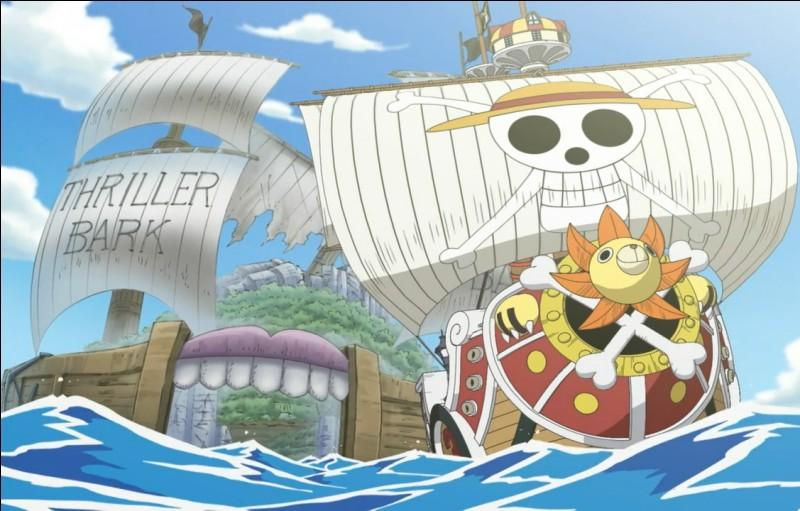 C'est l'histoire d'un jeune garçon qui rêve de devenir le roi des pirates.