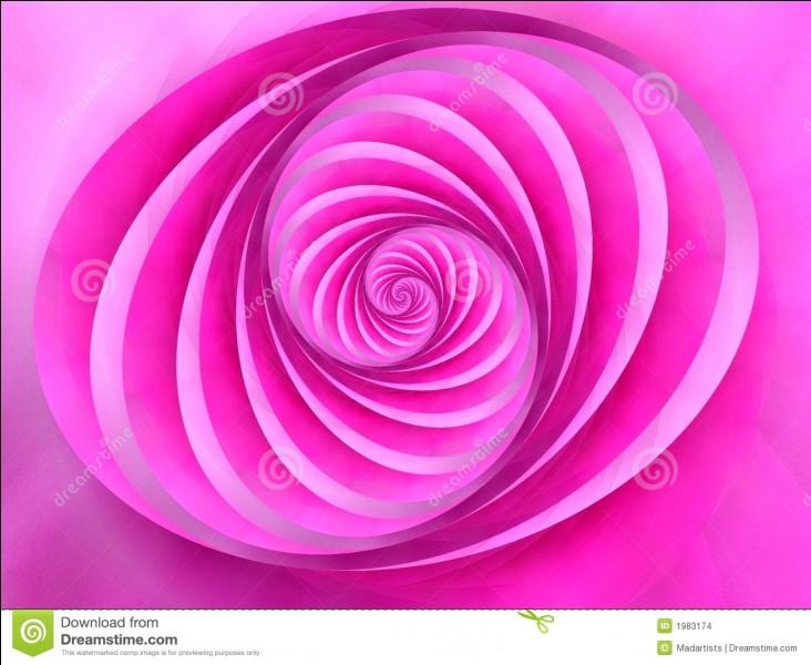"""Comment dit-on """"rose"""" en anglais ?"""