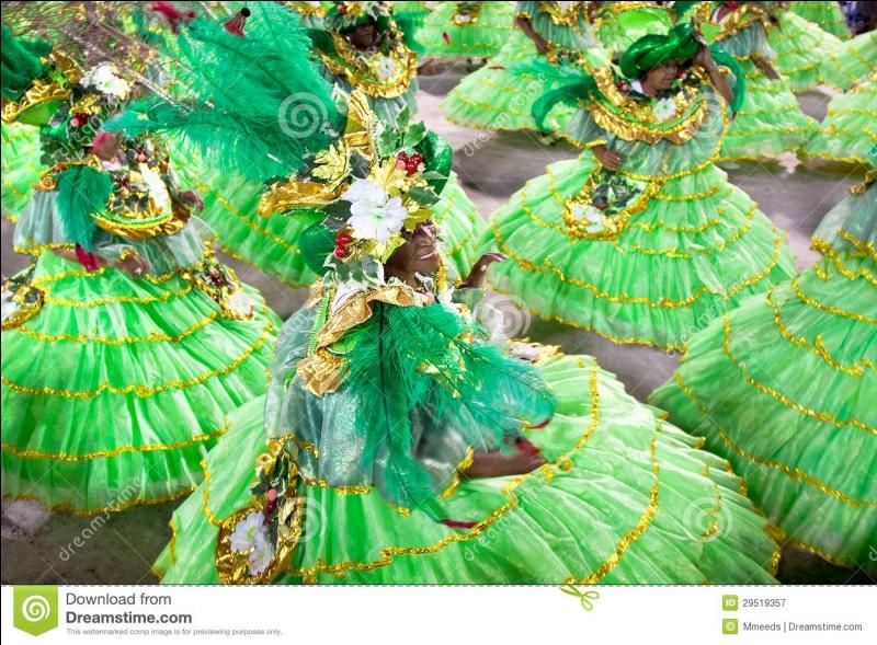Et enfin, tu pourras y danser et chanter au célèbre carnaval de Rio de Janeiro.