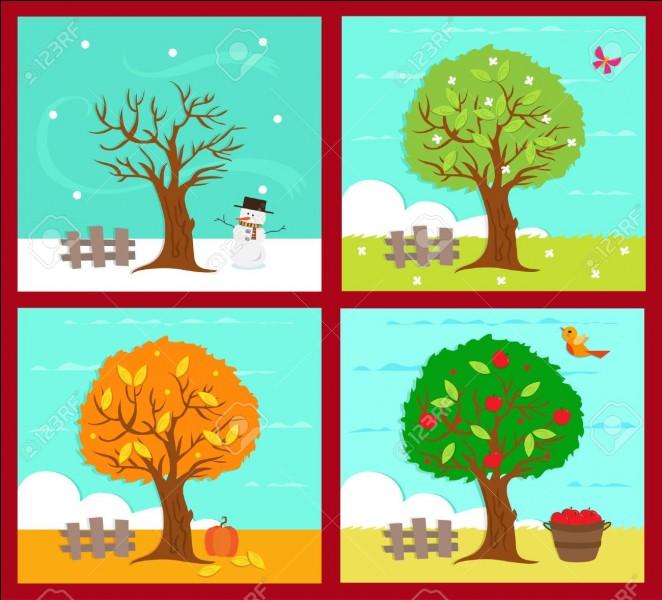 Quelle saison es-tu né (si il y en a deux choisis-en une) ?