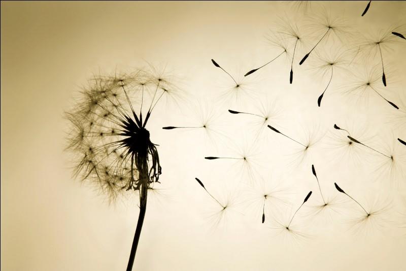 Tu perds espoir car tout semble se liguer contre toi. On te dit :