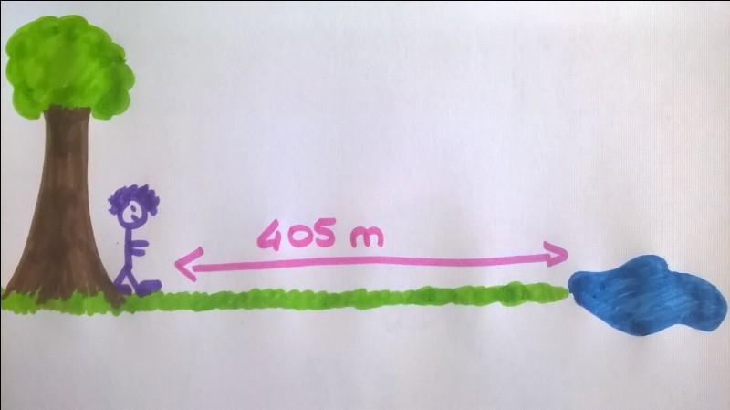 Observe bien le dessin et réponds à la question.Cette image représente un petit garçon de 8 ans, mesurant 1,28 m, faisant un parcours de 405 mètres, à pied, de l'arbre jusqu'au point d'eau. De quel pied est parti le petit garçon ?